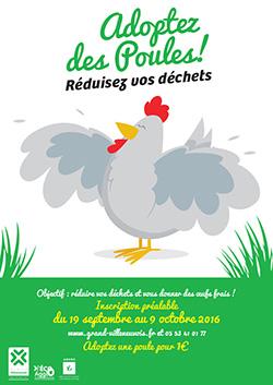 Adoptez des poules : réduction des déchets en Grand Villeneuvois